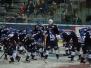 DEL - Adler Mannheim vs Fischtown Pinguine 13.01.2017