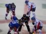 DEL - Düsseldorfer EG vs Adler Mannheim 10.02.2016