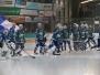 EV Lindau Islanders vs Höchstadt Alligators 28.10.2016