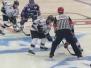 Adler Mannheim vs. Nürnberg Ice Tigers, 06.12.2015