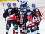 Adler Mannheim vs. ERC Ingolstadt 22-11-2015