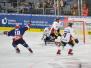 DEL - Adler Mannheim vs Eisbären Berlin