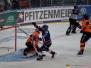 DEL - Adler Mannheim vs Grizzlys Wolfsburg