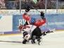 DEL - Adler Mannheim vs Kölner Haie