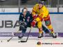 DEL - EHC Red Bull München vs. Düsseldorfer EG 23-02-2020