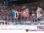 DEL - PO F4 - EHC Red Bull München vs. Adler Mannheim 24-04-2019