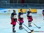 Hannover Scorpions - Halle/Saale Bulls