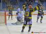 Krefeld Pinguine vs. Thomas Sabo Ice Tigers Nürnberg 21-11-2019