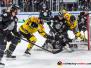 Thomas Sabo Ice Tigers vs Krefeld Pinguine 10.01.2020
