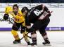 Thomas Sabo Ice Tigers vs Vienna Capitals 24.08.2018